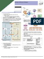 Trans-Patho-8a-Immuno.pdf