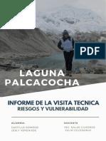 Informe Laguna Palcacocha