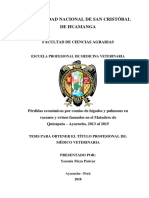 Decomiso de Visceras Por Causas Patologicas Del Higado y Pulmones en Ovinos