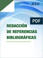 Normas_IICA_CATIE.pdf