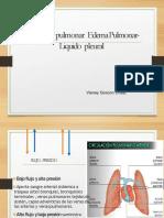 38 Circulacion pulmonar.pptx