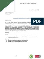 Informe Pavimentos (Proctor)