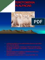 enterotoxemia-091102173714-phpapp01.pdf