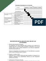 Cronograma Preliminar de Actividades1