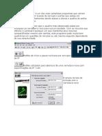 languard scaner.doc