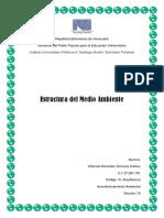 EstructuraDelMedioAmbiente (AcondicionamientoAmbiental)