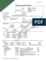 ver-resumen (1).pdf