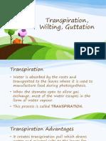 Transpiration resource-fcc62944-1601-4d18-8471-3cb192b4a485