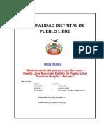Ficha Tecnica Del Puente Colgante
