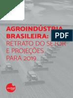 Agroindústria Brasileira_Retrato Do Setor e Projeções Para 2019