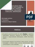 04_Pericias psicologicas