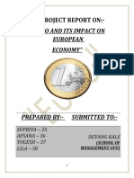 Project Report Euro