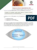 Competencias Profesionales Project Management IPMA