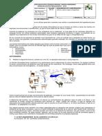 273275312-Taller-No-13-grado-7-texto-informativo.pdf
