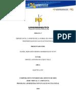 Importancia y Aportes de La La Norma ISO 45001 Para Los Profesionales de Salud Ocupacional Daniel Fernando Medina ID 457547 Uniminuto Guaduas