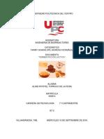 fermentación acido lactica