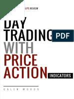 Day Indicator Manual.pdf