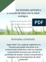 animales_centinela.pptx