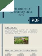 Realidad de La Agricultura en El Perú