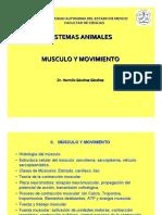 Musculo y Movimiento