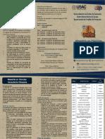 Trifoliar Informativo Maestria COnsultoria Tributaria