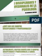 CAMPOS DE LA PSICOLOGIA.pptx