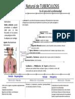 historianaturaldetuberculosis-110410000235-phpapp01