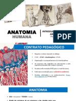 Introdução Aos Estudos Anatômicos