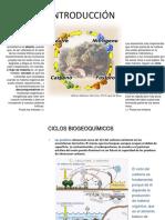 CICLOS bIOGEOQUIMICOS (1).ppt