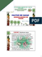 Cacao Clase 1c (Actualidad Est) 2019