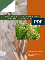 379456840-Importancia-Del-Cultivo-de-Arroz.docx