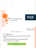 Lesi_pigmentation_prof_nardhi.pptx