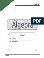 Limites Algebra 4to Año
