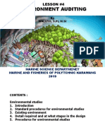 M_4_environment auditing.pdf