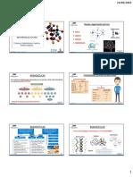 Biomoleculas Acidos Nucleicos (1)