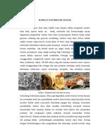 Manfaat Dan Bencana Geologi