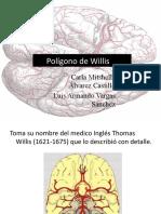 Poligono de Willis