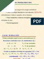 Bioenergetica_2_V13_14( Tema 8)