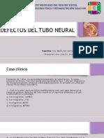 Defectos Del Tubo Neural Corregida (1)