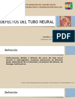 Defectos Del Tubo Neural Pedia (2)