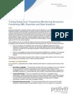Pov Aml Transaction Monitoring Scenarios Fine Tuning Protiviti