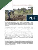 Persiste desigual y desordenado acceso a la tierra en Bolivia.docx