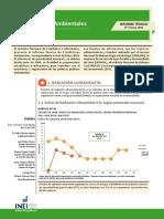 Informe Tecnico  Estadisticas Ambientales