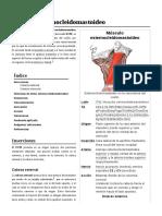 Músculo_esternocleidomastoideo