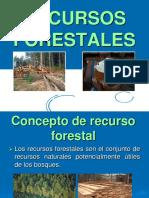 recursos forestales 22
