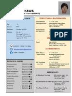 Resume Editable