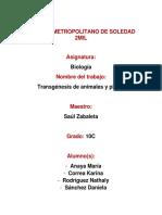 trabajo de biologia trangenesis.docx