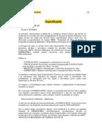 especificações Canindé.docx