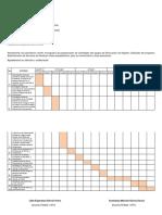 Cronograma Equipo de Trabajo Registro Salud
