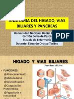Anatomia Del Higado, Vias Biliares y Pancreas 2013